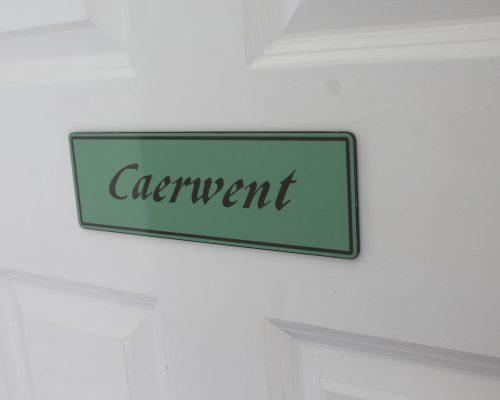 Carwent (25)